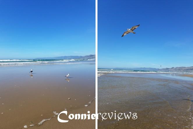 Pismo Beach (blog)